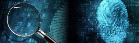 Escort Cyber Forensics